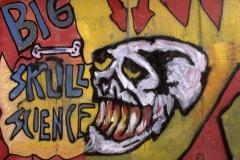"""Graffito """"BIG SKULL SCIENCE"""""""